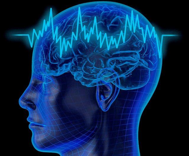 Стресс мешает нормальному функционированию нашего мозга.