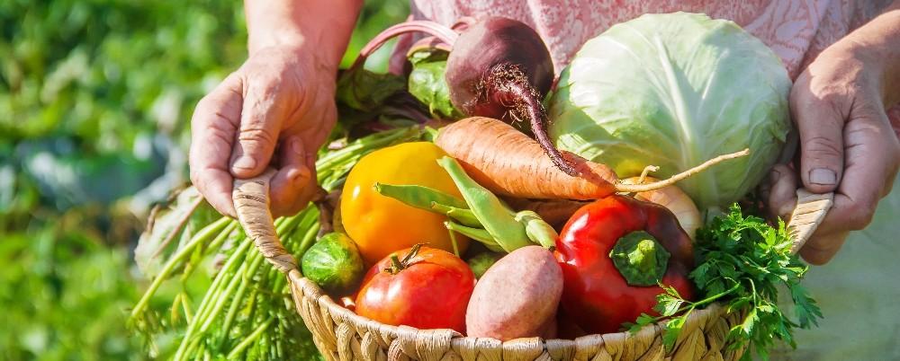 Pandemi, yaş meyve sebze ve mamulleri ihracatına fren yaptıramadı