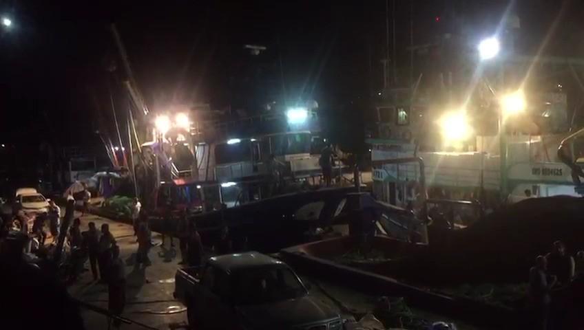 """Dikili'de balıkçılar """"Vira bismillah"""" dedi"""