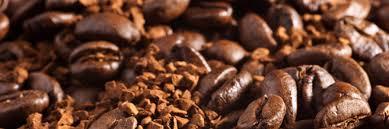 Izon Coffee Roastery WebSite 1