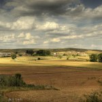 Daños en cosecha por invasión de ganados
