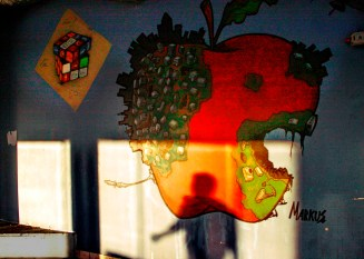 shadows and apple