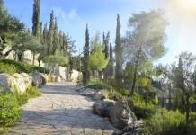 Jeruzsálemi kert - fotó: Shutterstock