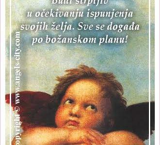 """Poruke Anđela:""""Budi strpljiv u očekivanju ispunjenja svojih želja. Sve se događa po božanskom planu!"""""""