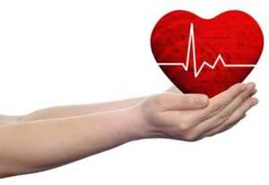 brahma-centar-srce