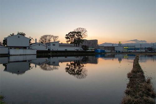 泉橋酒造 冬期湛水