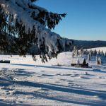 Izvorul Muresului Partia de schi