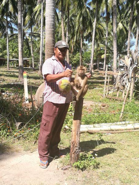 Monkey training :(