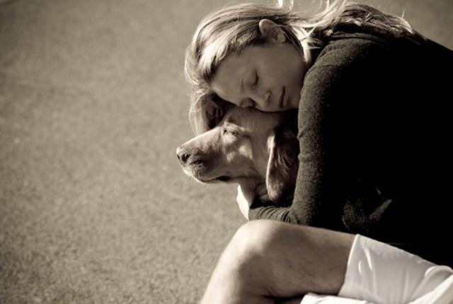 1er principe : Le lien avec son chien