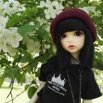 Alice — BJD Doll [1/6] 3