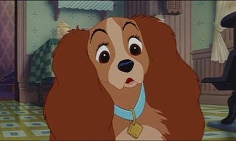 Студия Disney снимет ремейк «Леди и бродяги» • Новости ...