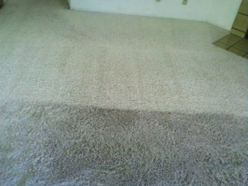The BEST method available gets you the BEST carpet cleaning in Las Vegas, Henderson, & North Las Vegas, NV!