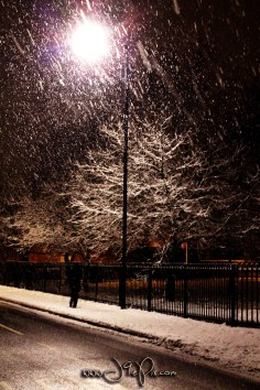 Snow Scatter