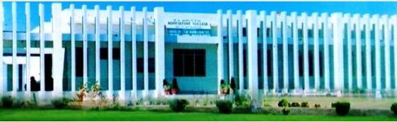 Sindh Agriculture University Dokri