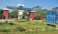 UVAS Ravi Campus
