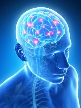 La epilepsia: recursos para profesionales sociosanitarios