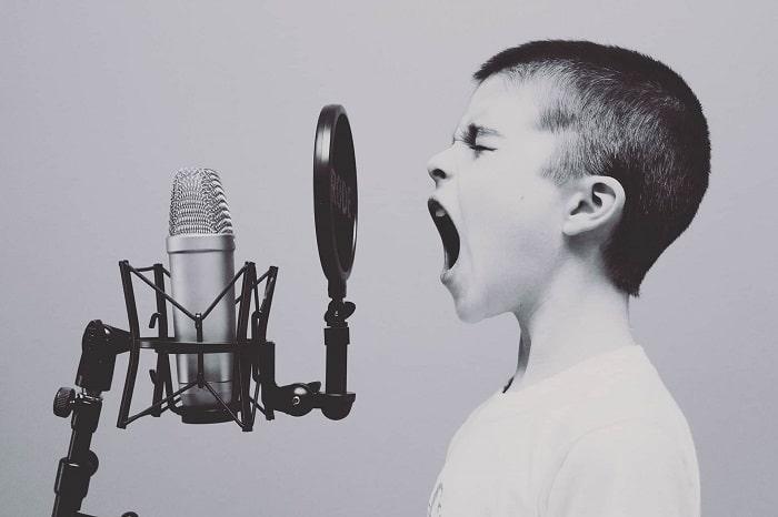 https://i1.wp.com/jabali-coaching.de/wp-content/uploads/2017/02/Vocal.jpg?resize=700%2C466&ssl=1