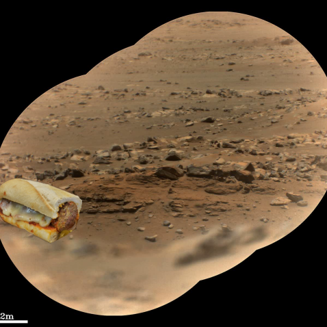 Mars Perseverance rover checking in on a meatball sub it left out days earlier to attract life