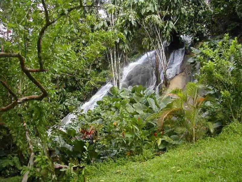 scatterwaterfalls