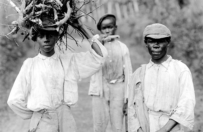 Where Did Jamaica's Maroons Go?