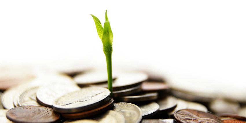 استثمار الوقف ثروة الأجيال (19)