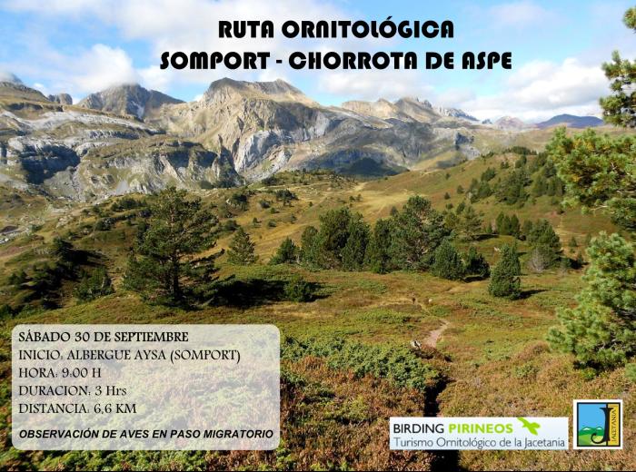 cartel ruta ornitológica 30sept.png