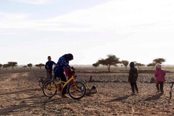 Bicicletas para el transporte de alumnos