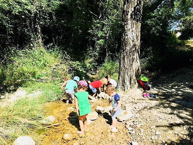 Escuela en la Naturaleza Caxico Asociación Educativa Mochuelos Ulle (4)