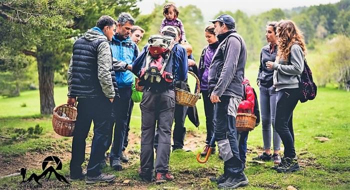 Imagen de archivo de las Jornadas Micológicas de Borau. (FOTO: David Ruiz de Gopegui. Ojos Pirinaicos –http://ojospirenaicos.es/actividades-pirineo/nuestro-blog/-)
