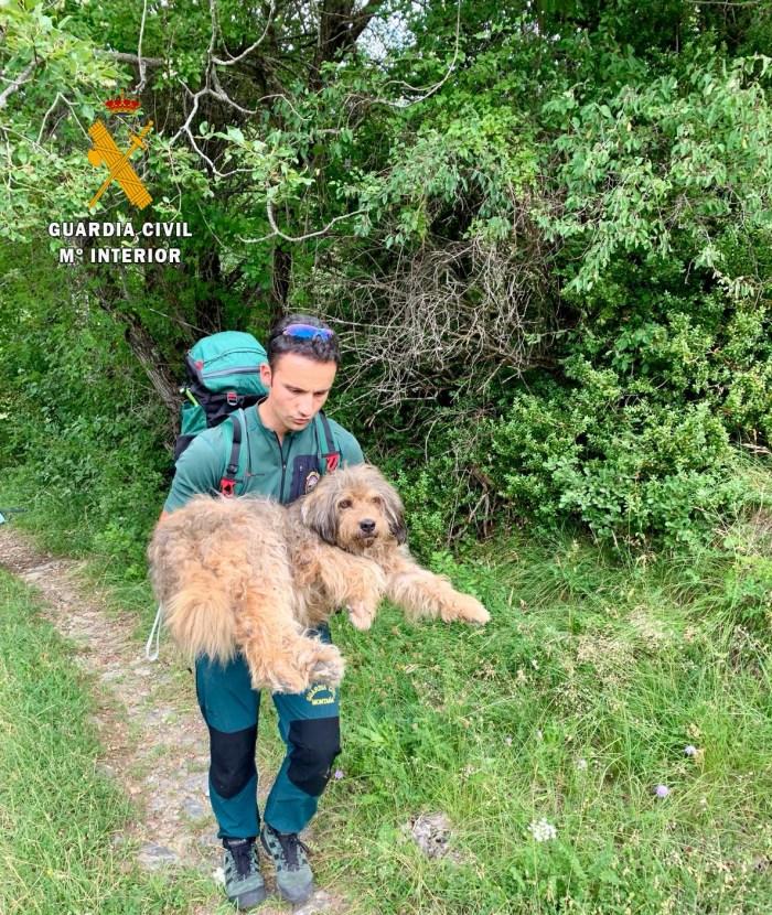 HOZ DE JACA. Rescate de un perro que había caído por un terraplén en Hoz de Jaca.