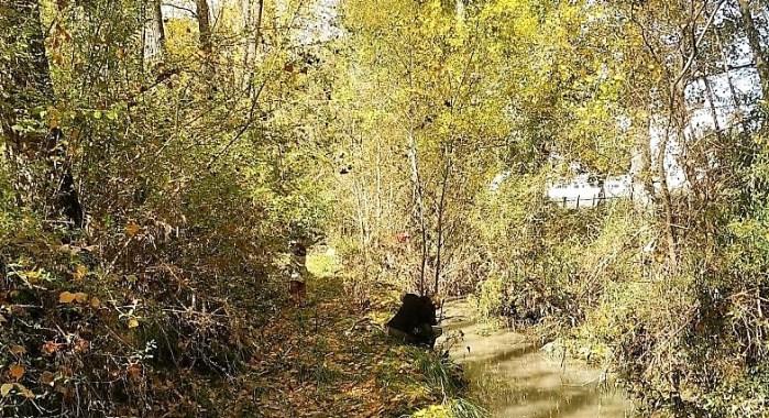 LA TULIVANA. El río Tulivana, a su paso por Sabiñánigo.