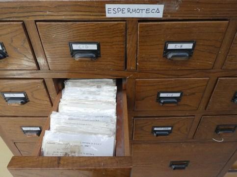 ARCHIVOS. Investigaciones del IPE. (FOTO: IPE)