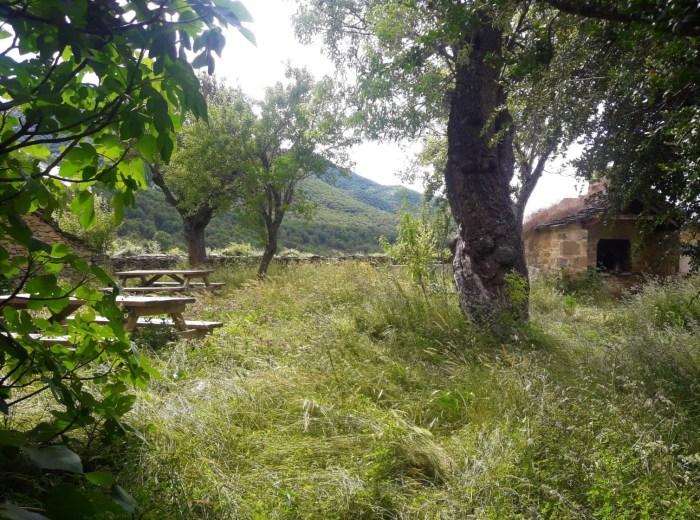 NATURALEZA E HISTORIA. Lugares con encanto para ir de picnic.