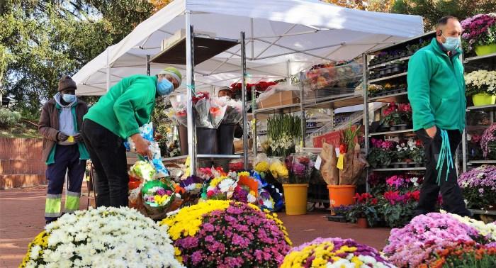 Venta de flores en Jaca, un clásico de Todos los Santos. Este año, en la Plaza de Elche. (FOTO: Rebeca Ruiz)