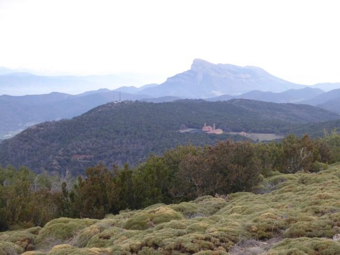 Espacio Natural Protegido de San Juan de la Peña. (FOTO: Chema Tapia)