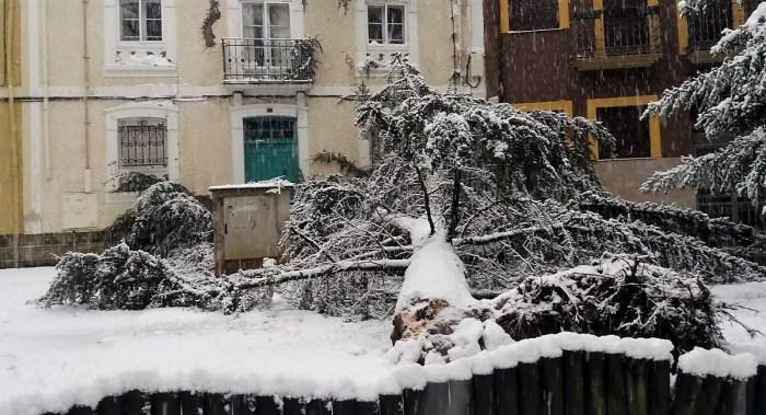 Consecuencias de la intensa caída de nieve en Jaca en las últimas horas. (FOTO: Servicio de Emergencias del Ayuntamiento de Jaca)