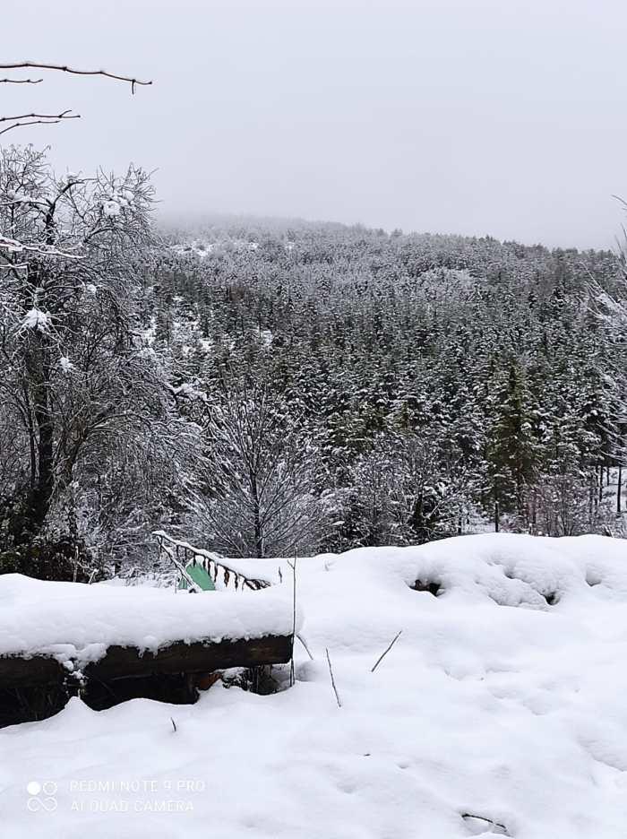 Imagen que presenta el valle tras la última nevada.