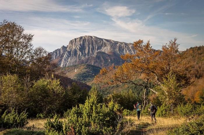 Caminos llenos de colores en La Jacetania: una primavera para los sentidos. (FOTO: David Ruiz de Gopegui. Ojos Pirenaicos)