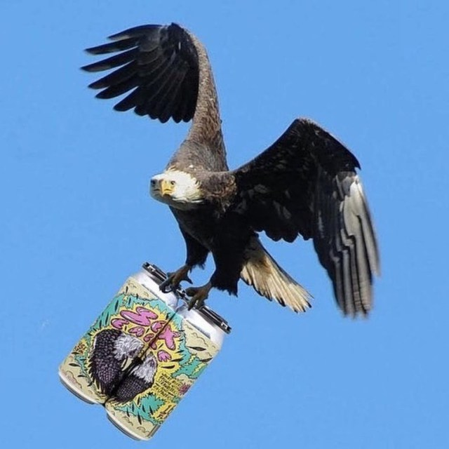 Sex Eagle