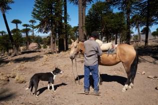 Caviahue_Mapuche 6