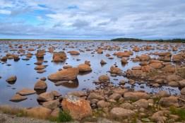 Une rivière de caillou à Terre-Neuve
