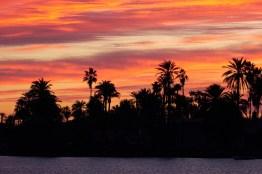 Soleil,palmier et mer
