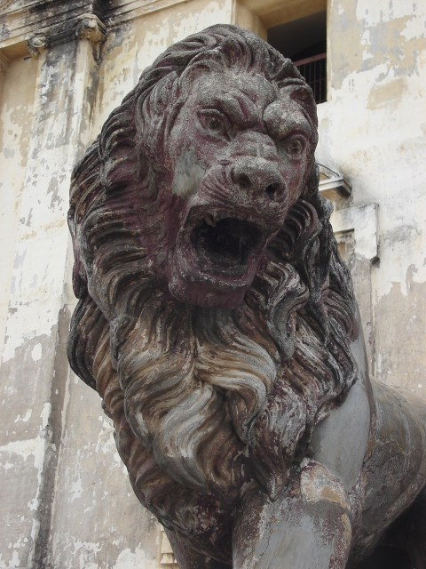Lion statue outside the cathedral in Leon, Nicaragua by Mark Stevens