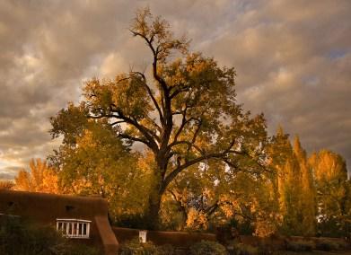 Galisteo Autumn