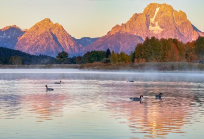 Mt. Moran Morning
