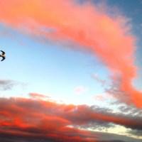 Sky Dreaming
