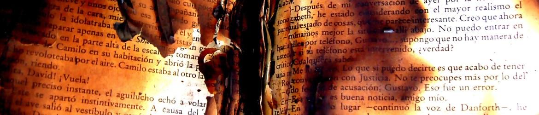 burned-book-censorship