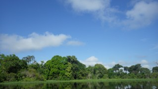 Cruising through the Amazon
