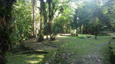 The mossy stones allow the site to retain it's recently uncovered feel
