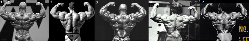 back double bicep rear pose